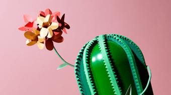 Love Life of Plants