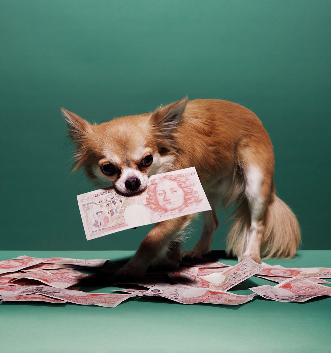 hattie newman guardian money